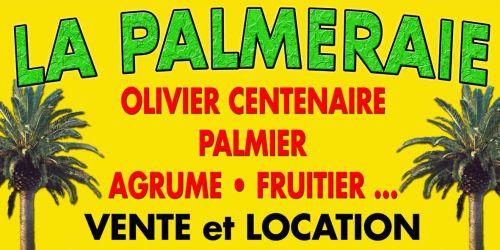 Jardinerie la palmeraie 09700 le vernet annuaire des for Jardinerie internet